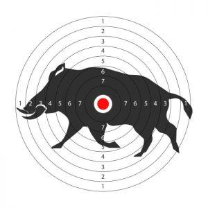 Gum Log Plantation hog hunting tips
