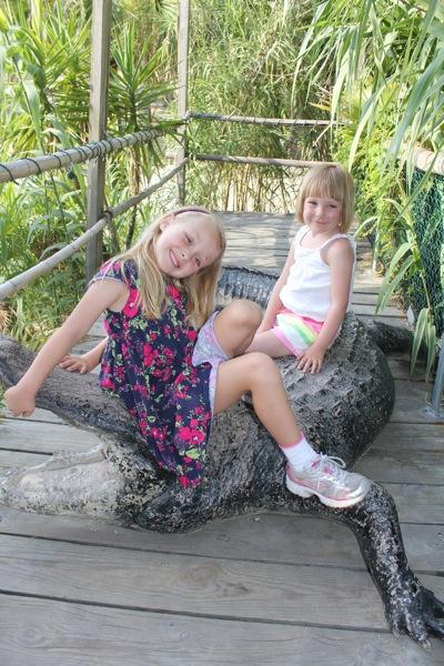 Taming Gators at the Crab Shack