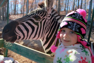 Camille and a Zebra