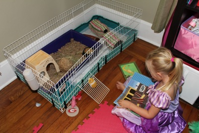 Reading to Piglet