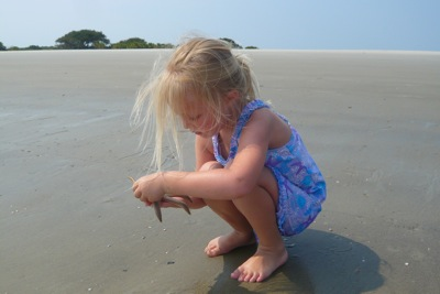 Discovering Sea Stars