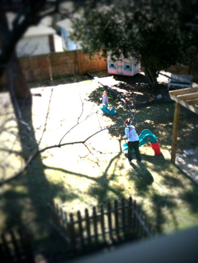 Backyard Cleanup