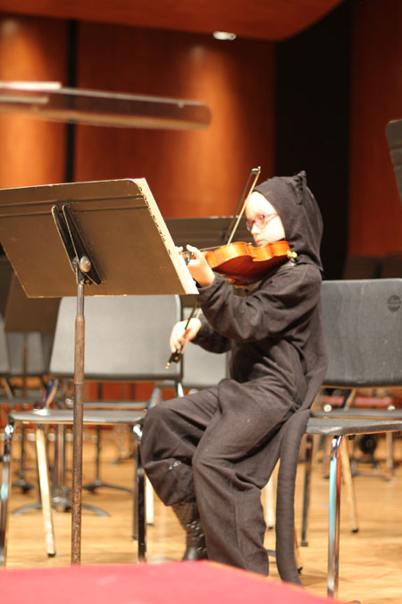 Orchestra Cat