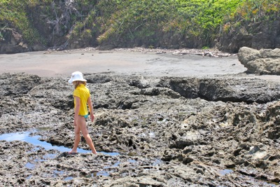 Walking the Tidal Pools