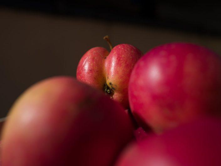 Äpfel aus dem Havelland