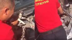Kırıkkale İtfaiyesi Otomobil Motoruna Sıkışan Kediyi Kurtardı