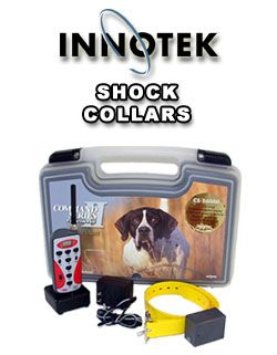 Shock collar for hunting dogs