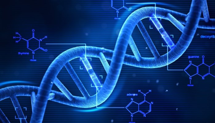 Footballer's DNA?