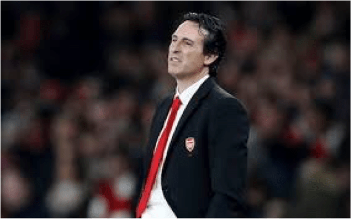 Emery-Looks-On