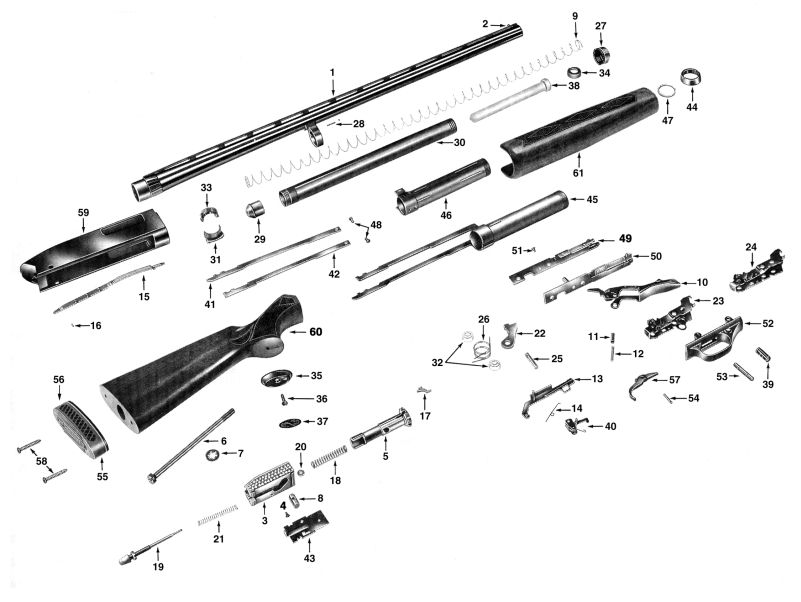 Winchester Sxp Assembly Pictures to Pin on Pinterest