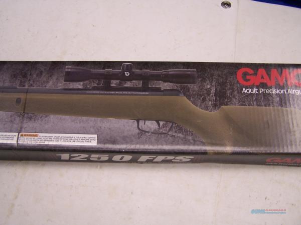 Gamo Camo Rocket 177cal With 4x32 & Pba Platinum