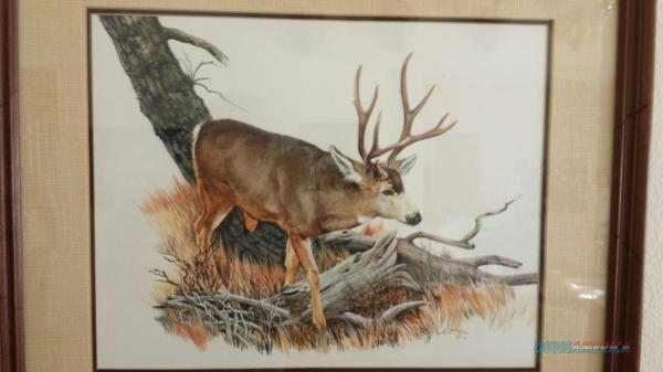 Watercolor Painting Deer Buck