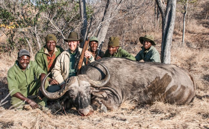 This wide buffalo bull, hunted in Zimbabwe's northeast corner, stubbornly fought being taken by the author's .416 Rem. Mag.