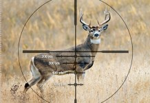 Top Tips to Choose the Perfect Hunting Scope