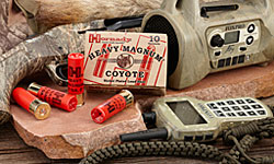 Hornady coyote shotshell