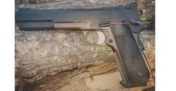 Dan Wesson Bruin – Long Slide 10mm, .45 ACP