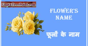 Flower's Name