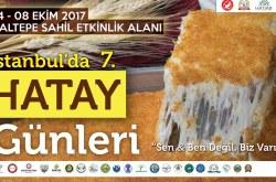 7. Istanbul'da Hatay Günleri