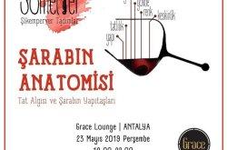 Grace Lounge'da Somelyer ile Şikemperver Tadımlar: Şarabın Anatomisi