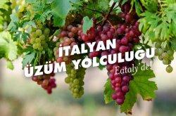 Eataly'de İtalyan ŞaraplarI Tadımı