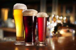 Biranın Sırlarına Yolculuk