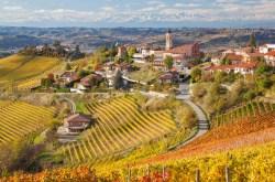 Toscana Bağları Sanal Turu