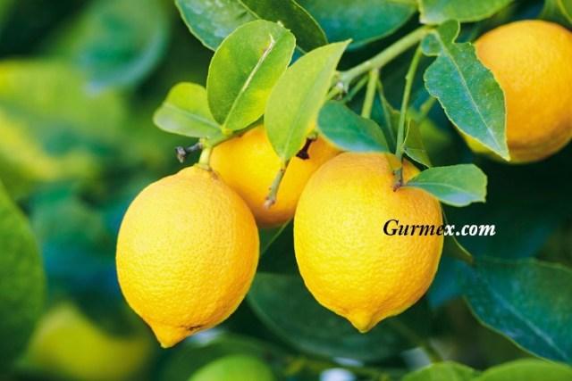 Limon Kemoterapiden Daha Etkili