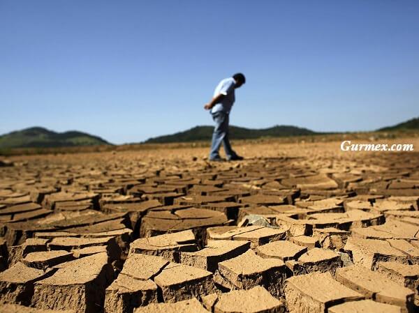 iklim-degisiklikleri-ve-gida-guvenligi