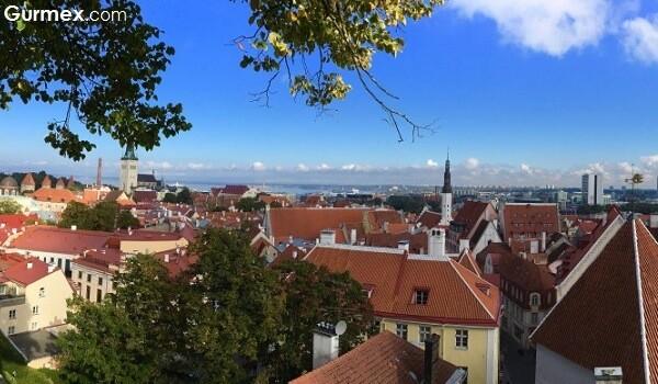 estonya-estonia-tallinn-toompea-manzara-tepe-gezi-gurme-blog