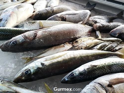 Ayazma Restaurant, Bozcaada balık nerede yenir
