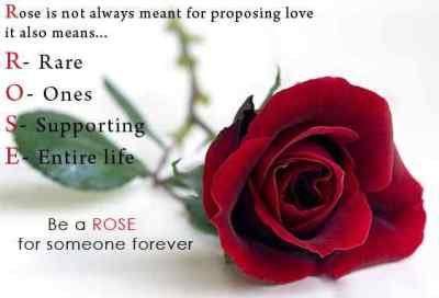 Happy rose day 2018 wishes images greetings wallpapers sms quotes m4hsunfo