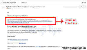 Bigrock Verification Email