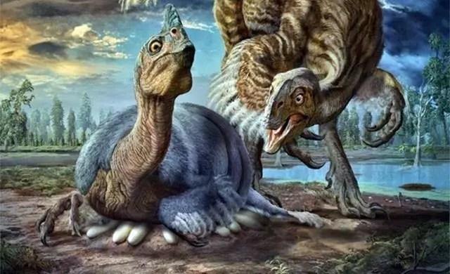 Un dinosaure ressemblant au plus terrifiant poulet du monde trouv  lintrieur de son norme