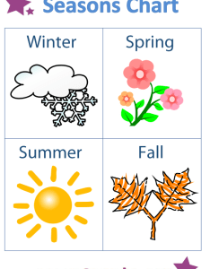 Seasons chart trees northern hemisphere pictures also charts guruparents rh