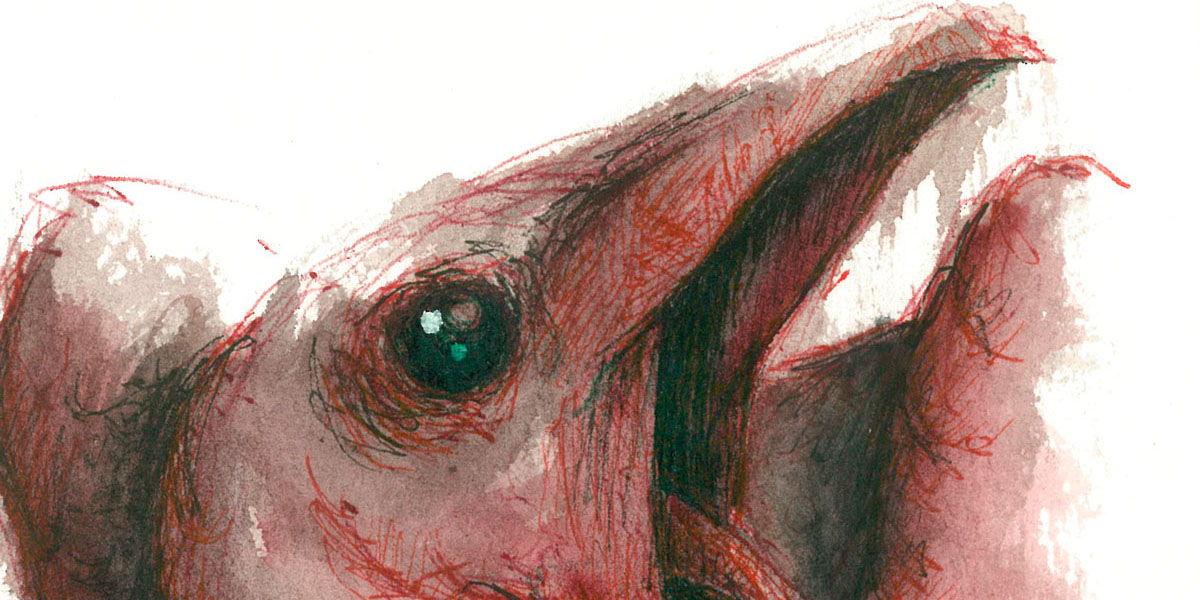 Dibujo: Biliares { Furias } A1 (detalle/banner) | por Gustavo A. Díaz G.