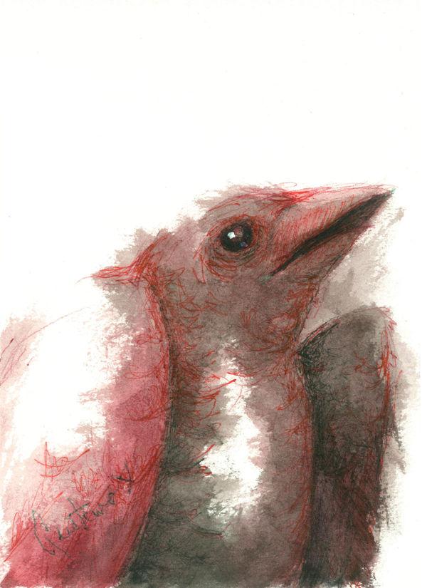 Dibujo: Biliares { Furias } C2 | por Gustavo A. Díaz G.