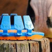 Las herraduras de plástico para caballos ¡Una revolución para sus patas!