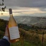 In Abruzzo, sulle colline di Ripa Teatina (Ch) nasce il vino di Giuseppe Simigliani