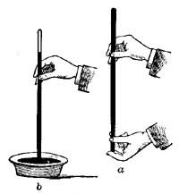 The Project Gutenberg eBook of General Science, by Bertha