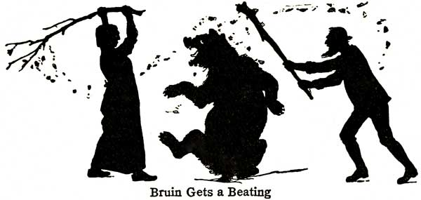 Bruin Gets a Beating