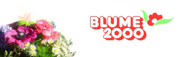 Blume2000de Gutschein August 2019  RabattCode