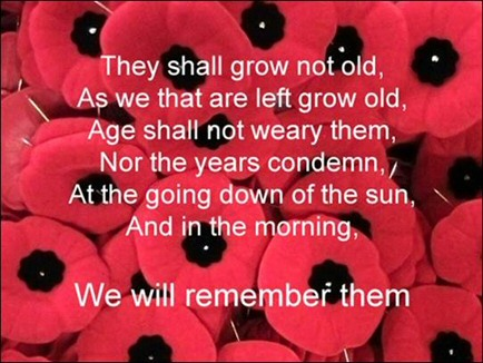Image result for poppies are for remembrance
