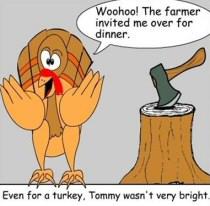 Turkey Funnies
