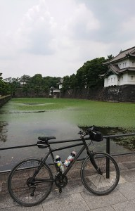 Ol' Paint at the Imperial Palace