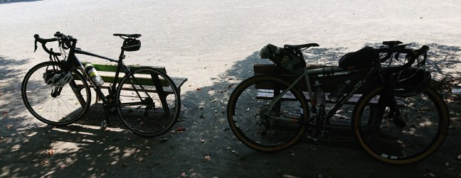 Two bicycles in a park