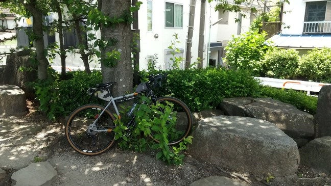 Bicycle leaning against tree in rock garden