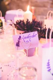 DL_polhawnfort_wedding_blog_49