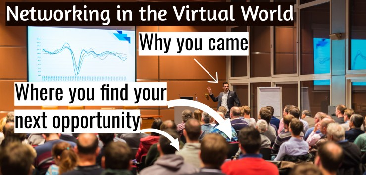 Networking in the virtual world