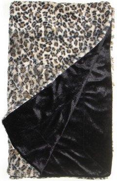 100208-cheetah.jpg