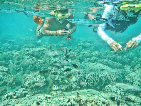 130107-apra-snorkeling.jpg